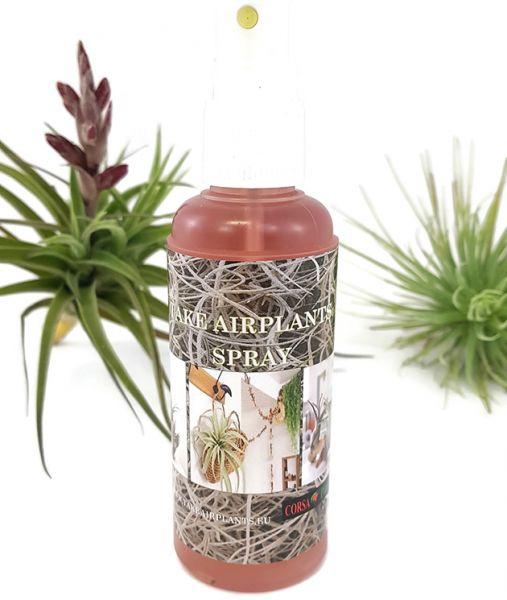 Tillandsia Spray - Pflegespray für Tillandsien