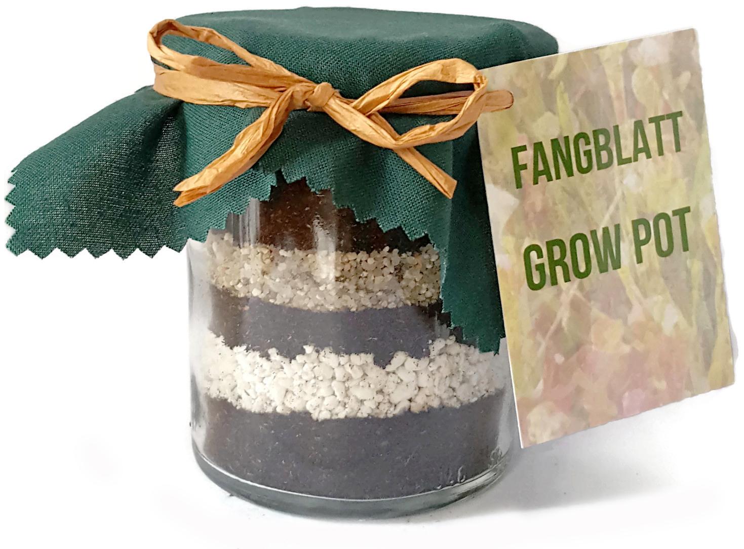 grow pot geschenkidee fangblatt karnivorenshop. Black Bedroom Furniture Sets. Home Design Ideas